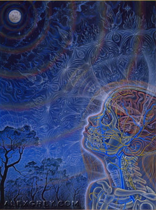Wonder by Alex Grey